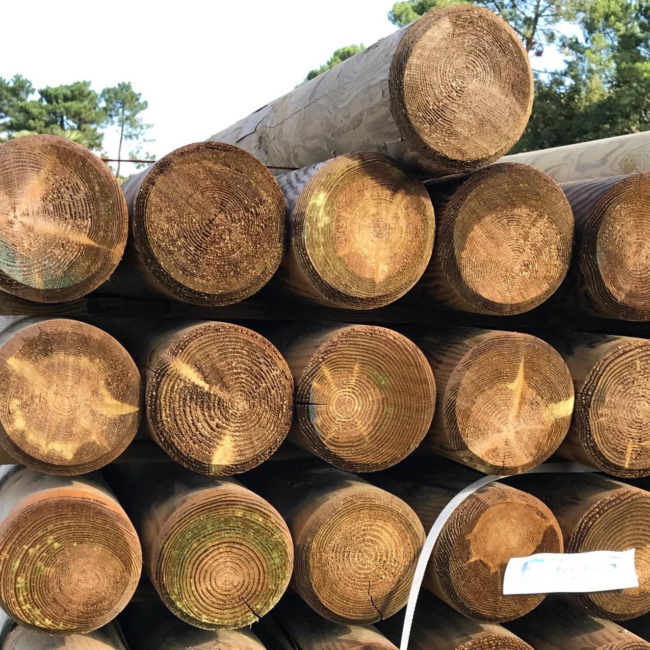 Bois Pour Exterieur Classe 4 rondin bois autoclave fraisé Ø14 x 240 cm